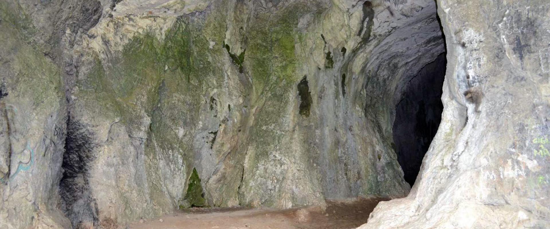 Peștera Liliecilor